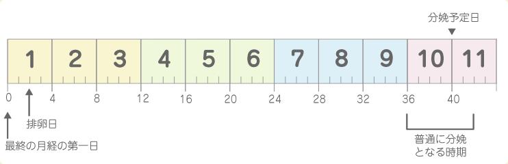 計算 方 数え 週 妊娠 数